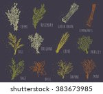 herbs set on dark background | Shutterstock .eps vector #383673985
