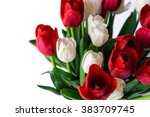 Stock photo flowers background beautiful view of red and white flowering tulips in a vase isolated for 383709745
