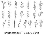 set of vector vintage floral...