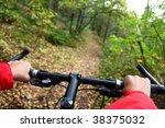 biking. mountain bike in the... | Shutterstock . vector #38375032