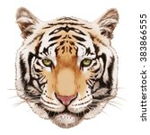 portrait of tiger. hand drawn... | Shutterstock . vector #383866555