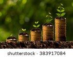 money growing in soil | Shutterstock . vector #383917084