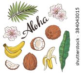 set of aloha objects   coconut  ... | Shutterstock .eps vector #384043015