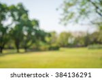 abstract blur city park bokeh... | Shutterstock . vector #384136291