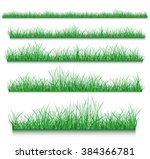 grass | Shutterstock .eps vector #384366781