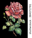 rose color pencil  | Shutterstock . vector #384372781