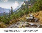 Hiking Trail In Tatra National...