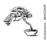 Hand Sketch Bonsai