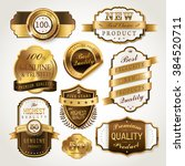 elegant golden labels... | Shutterstock .eps vector #384520711