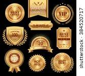 elegant golden medal label... | Shutterstock .eps vector #384520717