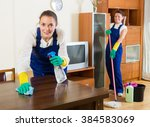 professional happy russian... | Shutterstock . vector #384583069