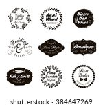 retro vintage logotypes and... | Shutterstock .eps vector #384647269