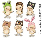 Six Cute Chicks In Different...