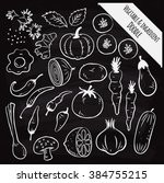 vegetable and ingredient doodle ... | Shutterstock . vector #384755215