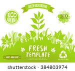 100  organic  eco friendly  ... | Shutterstock .eps vector #384803974
