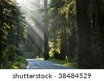 beautiful light rays blasting... | Shutterstock . vector #38484529