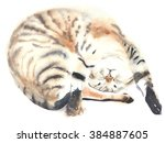 Stock photo cat kitten sleeping lying watercolor illustration painting isolated on white background greeting 384887605