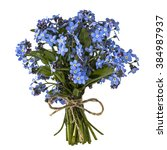 bouquet of blue forget me not ... | Shutterstock . vector #384987937