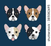 bulldog breed design  | Shutterstock .eps vector #385082695