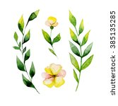 watercolor yellow flower and... | Shutterstock . vector #385135285