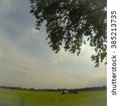 Small photo of Agrarian fields