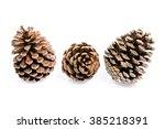 pine cones | Shutterstock . vector #385218391