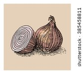 onion free hand drawing  sketch ...