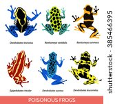 set of different poisonous... | Shutterstock .eps vector #385466395
