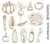 ripe farm tomato and corn ... | Shutterstock .eps vector #385625341