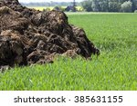 Manure  Which Lies In The...