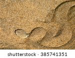 Small photo of peringuey viper on Namibia desert, Bitis Peringuey