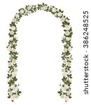 arch of white climbing roses....
