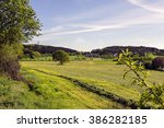 Summer Landscape In The...