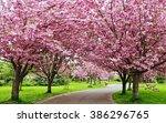 Scenic Springtime View Of A...