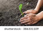 man hands planting the young... | Shutterstock . vector #386331109