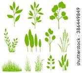vector set of plants  leaves ... | Shutterstock .eps vector #386449849