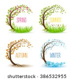 Vector Tree In Four Seasons  ...