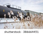 Railway Train in Winter With Frozen Cattails - stock photo