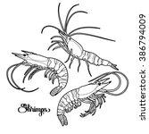 graphic vector shrimps...   Shutterstock .eps vector #386794009