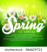 fresh spring background with... | Shutterstock .eps vector #386829721
