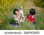 smiling little girls sitting on ... | Shutterstock . vector #386992855