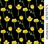 flower buttercup pattern  hand... | Shutterstock . vector #387057571
