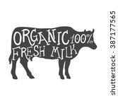 hand drawn farm animal cow.... | Shutterstock .eps vector #387177565