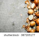 fresh onion. on a stone...
