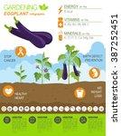 gardening work  farming... | Shutterstock .eps vector #387252451