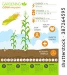 gardening work  farming... | Shutterstock .eps vector #387264595
