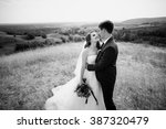 wedding walk on nature | Shutterstock . vector #387320479