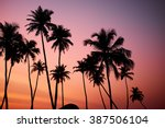 tropic vew of beautiful coral... | Shutterstock . vector #387506104