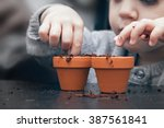 child planting seeds in pots | Shutterstock . vector #387561841