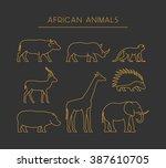 Vector Line Set Of African...